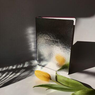 Срібний щоденник