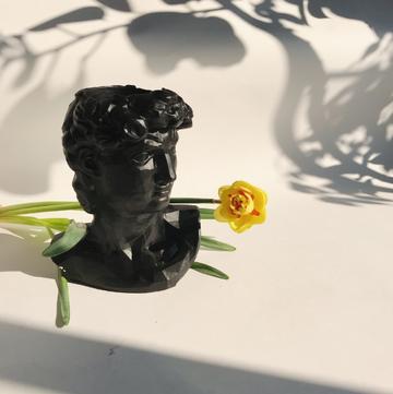 Чорний арт-вазон Давид