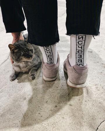 Шкарпетки Исчезаю
