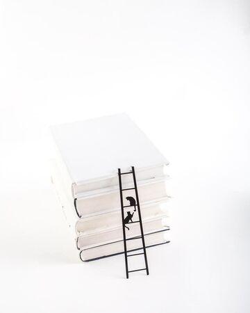 Чорна закладка для книг Кішки на Драбині