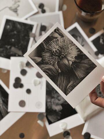 Набір чорно-білих листівок