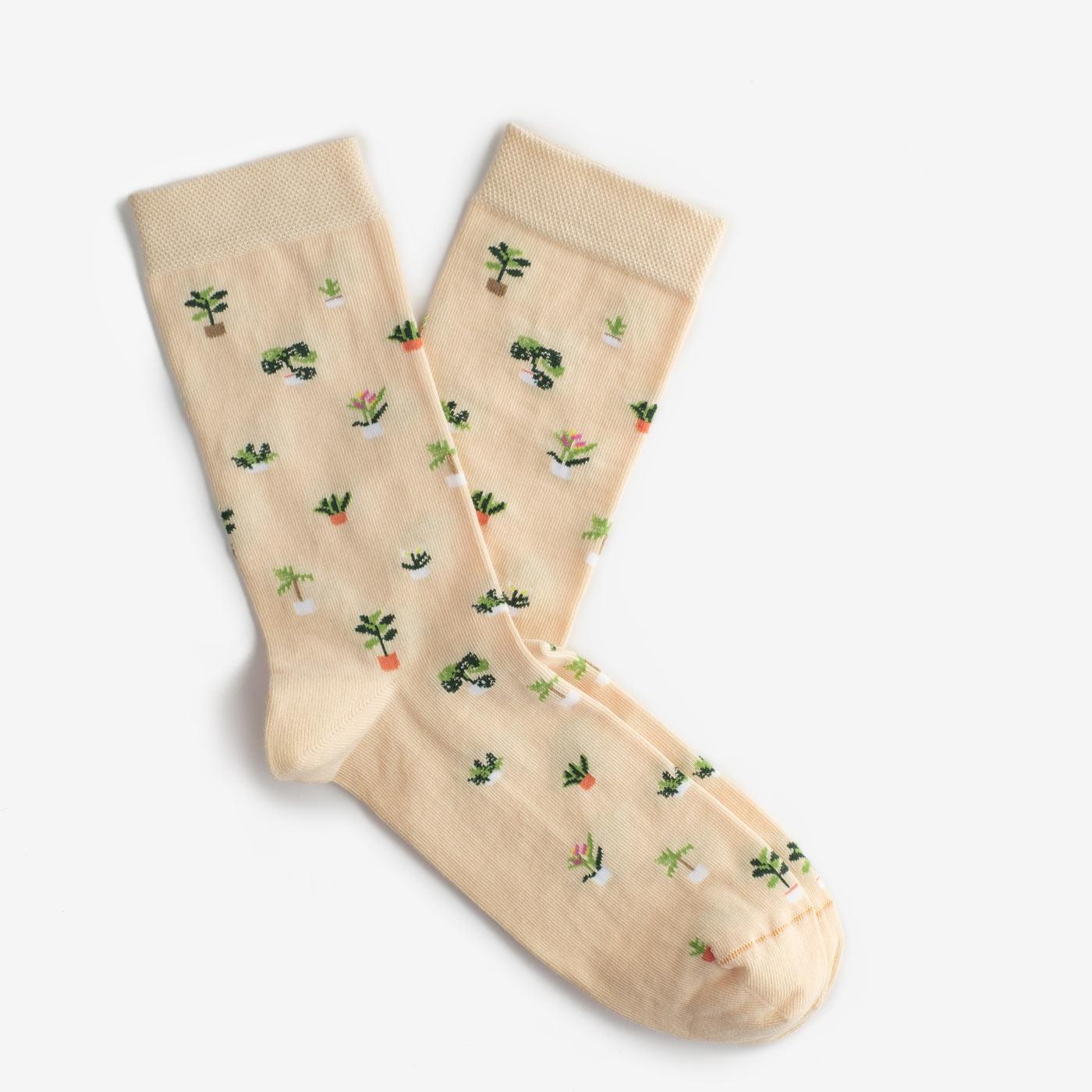 Шкарпетки Вазони